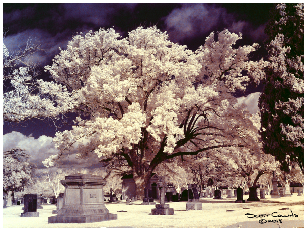 Color Infrared image of Belview Cemetary