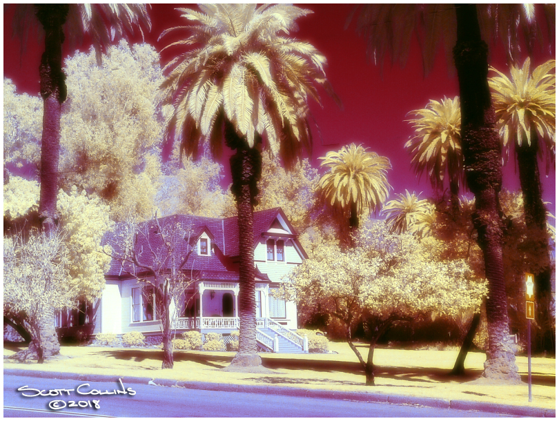 Color Infrared Image of Orchard house