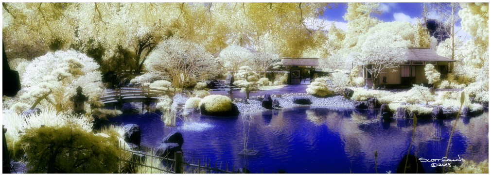 Color Infrared image of Japanese Tea Gardens