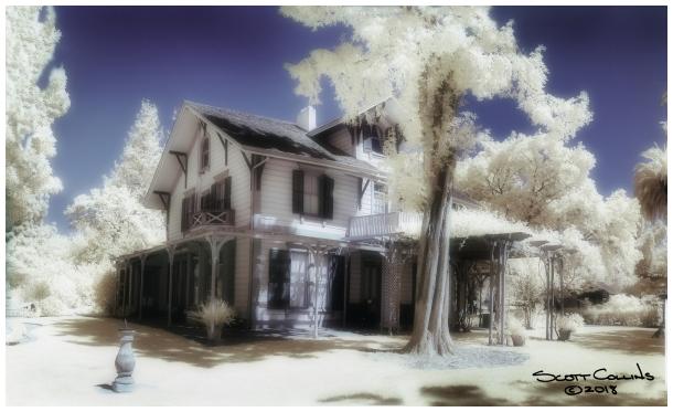 Infrared Shinn Historic Gardens
