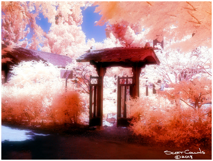 Infrared Shinn Historic Gardens