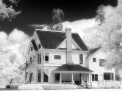 Infrared Ardenwood Historic Farm