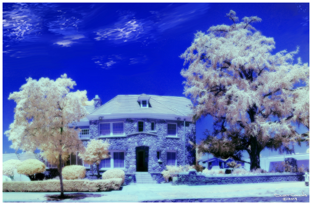Infrared Image of Orchard House