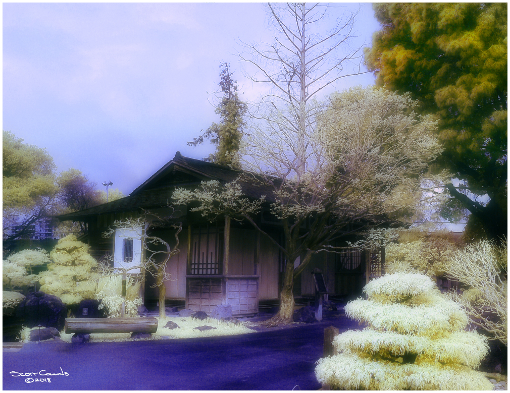 Infrared Gardens San Mateo California