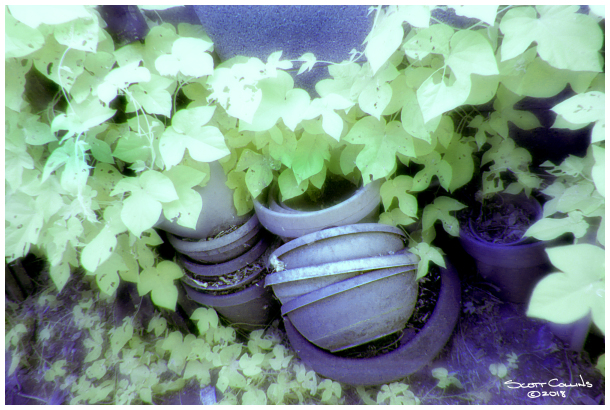 Infrared Pots