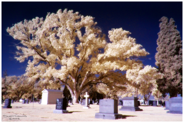 Infrared Image of Belview Cemetery