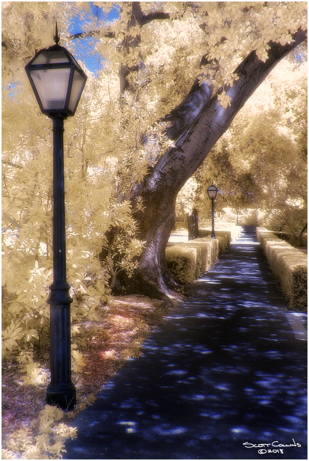 Infrared Scripps College