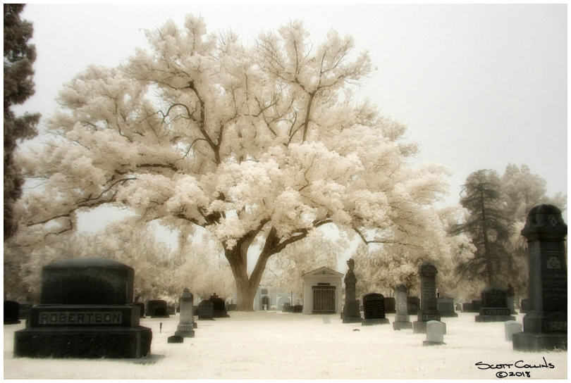 Infrared Bellview Cemetery
