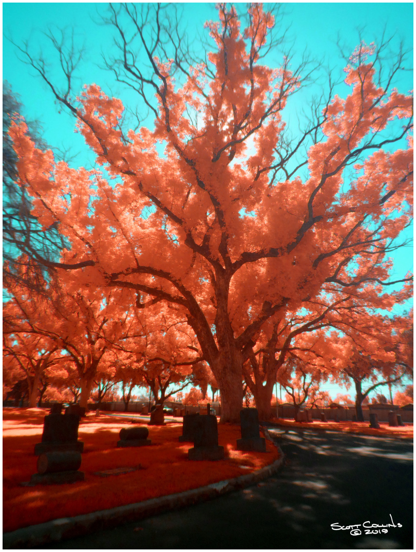 Infrared Bellview