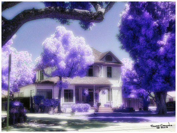 Infrared Orchard Home