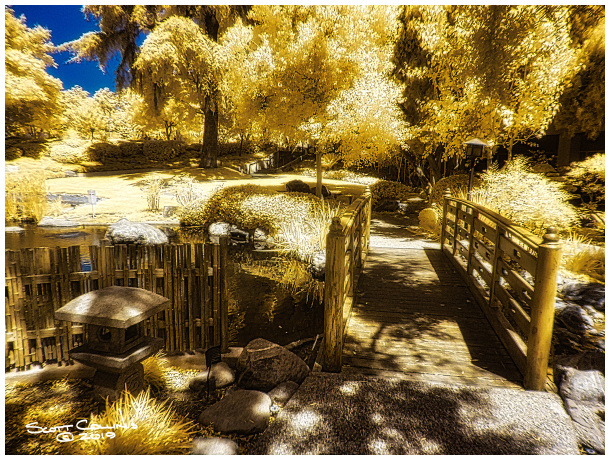 Infrared image of Cal Poly Pomona