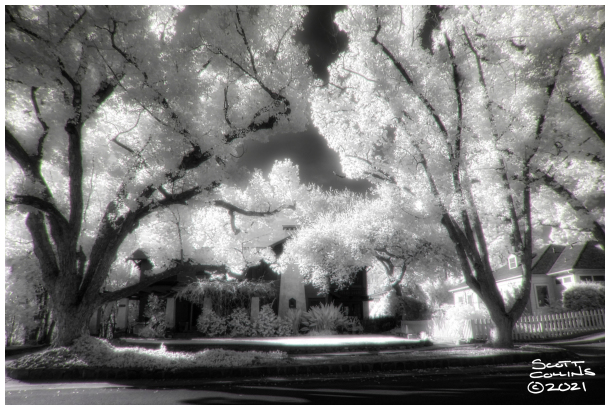Infrared Claremont Homes