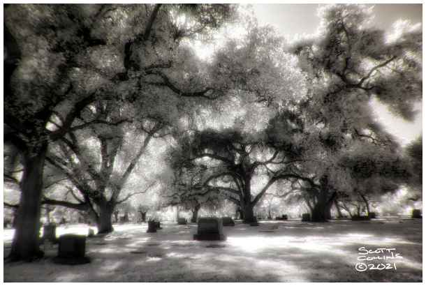 Infrared images of Claremont