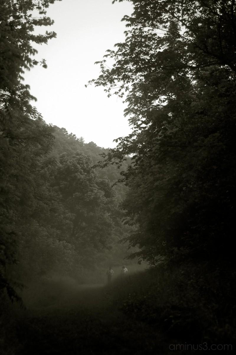 Fishermen in the mist...