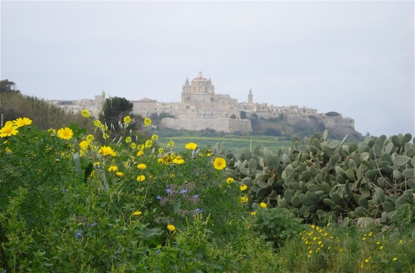 View of Mdina from Ta' Qali