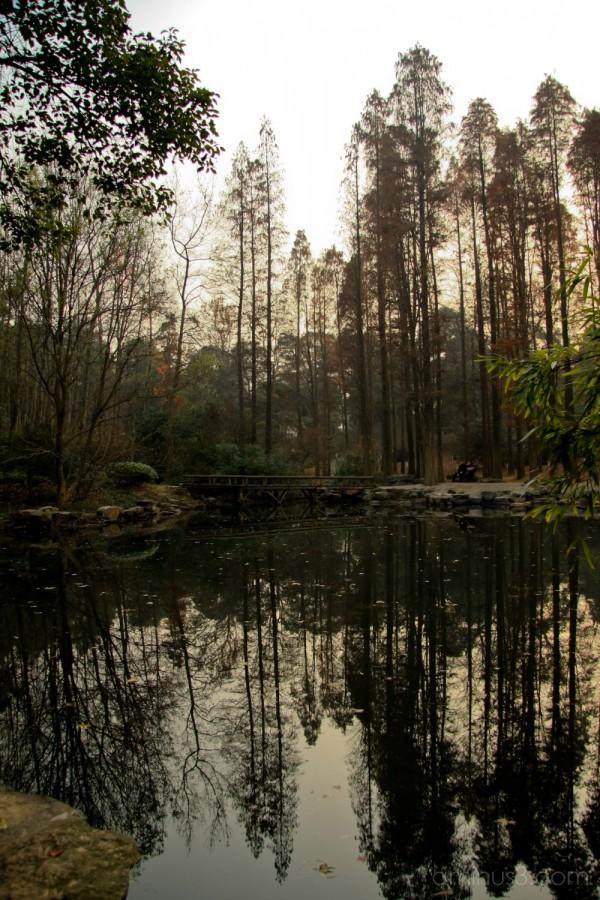 Hangzhou Botanical Gardens