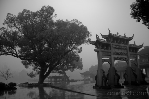 China, HangZhou, Lotus Leaf, Tree & Door