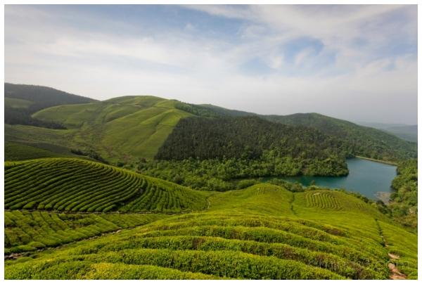 China, ZheJiang, NingBo