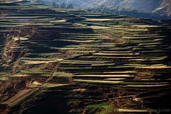 China, YunNan, YunNan, Road to DongChuan