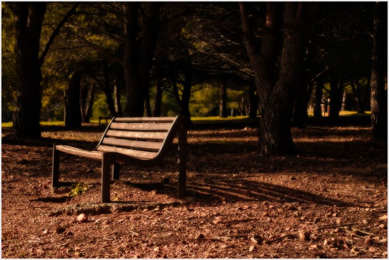 A bench in the park with dramatic sunlight.
