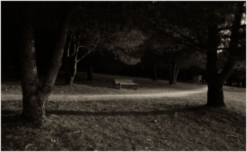 Peaceful scene in the park with bench.