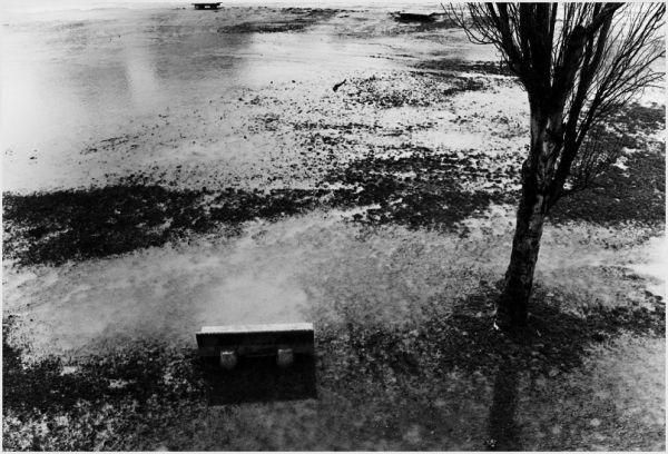 Water flooding grass field, overturned benches.