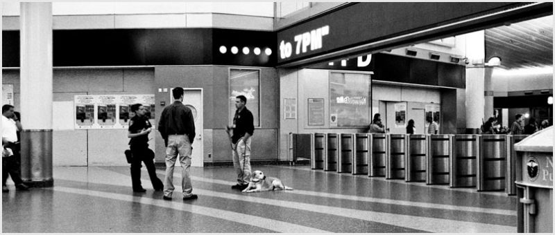 Police security with dog at Staten Island Ferry.