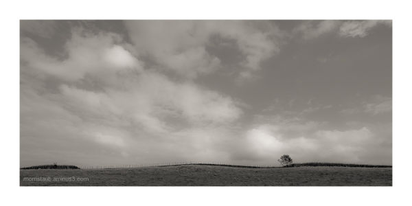 Minimalist landscape.