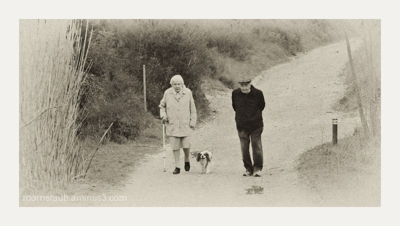 Old couple walking on a trail with their dog.