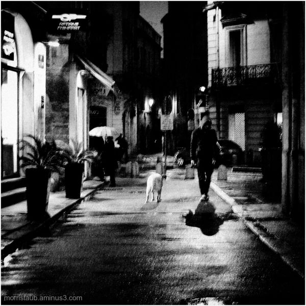 Man with dog in street at night.
