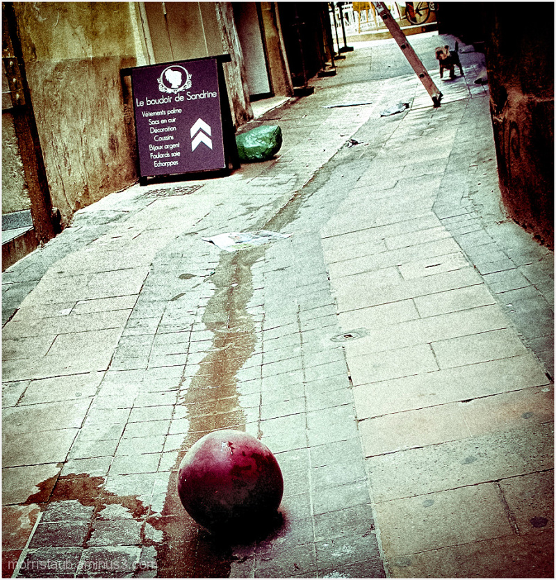 Dog and ball on a small street in France.