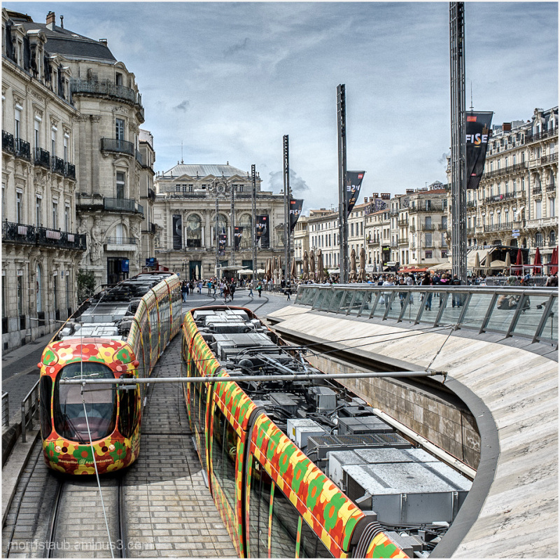 Tramways circulating in Montpellier, France.