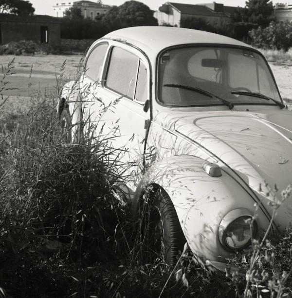 vw-beatle car