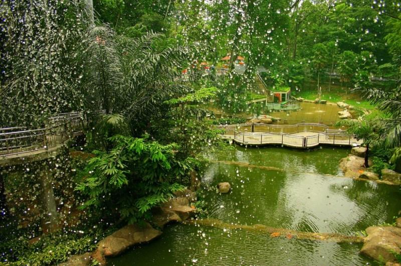 Malaysia bird park kuala lumpur