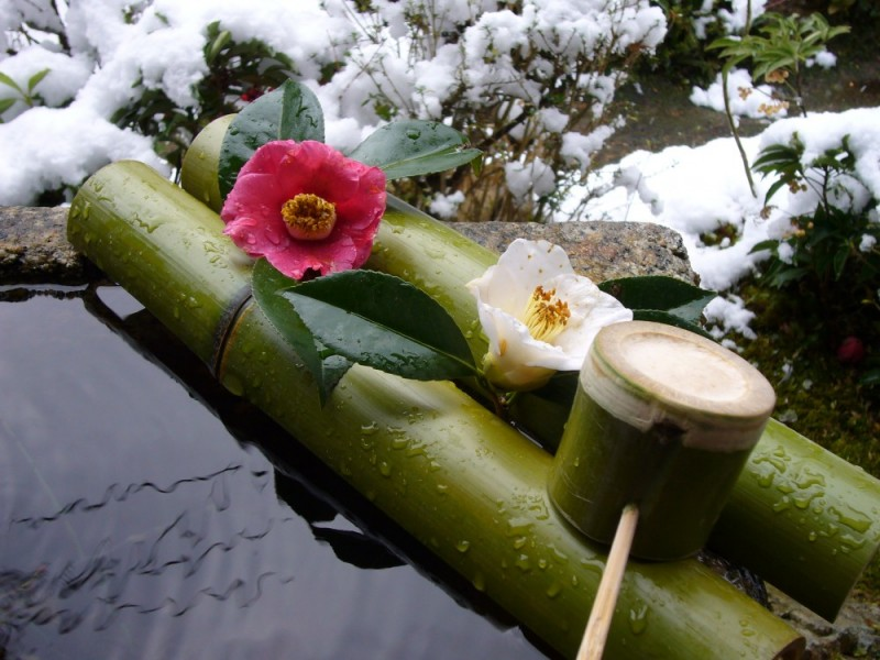 Snow, Iwakura Jisso-in Temple (岩倉実相院)