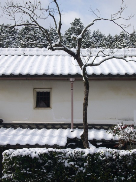 Snowy Storehouse in Iwakura, Kyoto (岩倉 京都市)