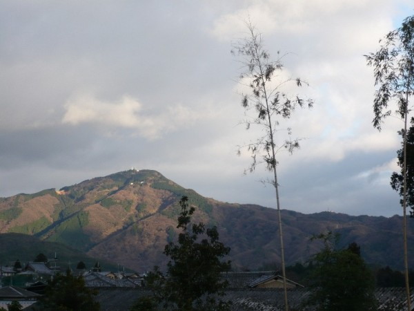Late Afternoon, Mt. Hiei (比叡山)