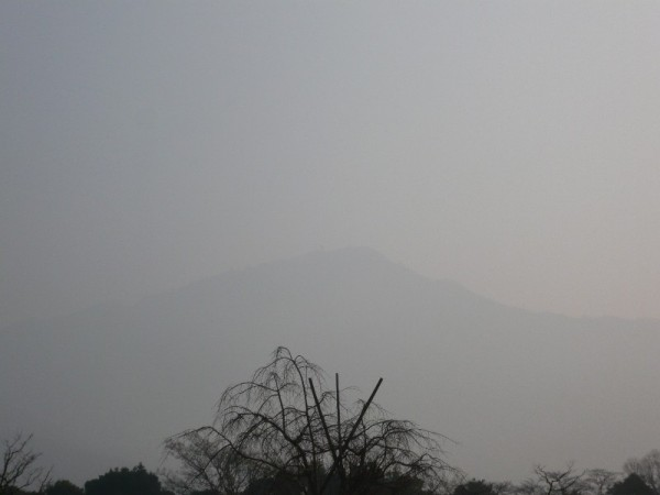 Foggy Morning, Mt. Hiei (比叡山)