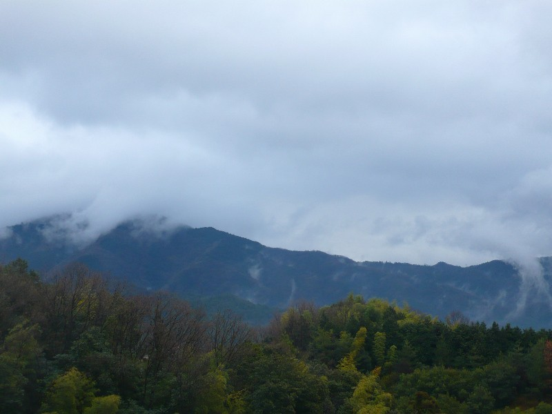 Mt. Hiei, Rainy Day (比叡山)