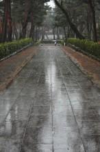 Cold Rain, 2