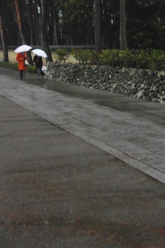 Cold Rain, 3