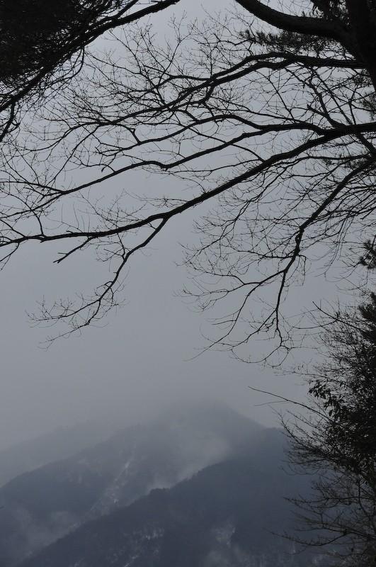 Cold Morning, Mt. Hiei (比叡山)