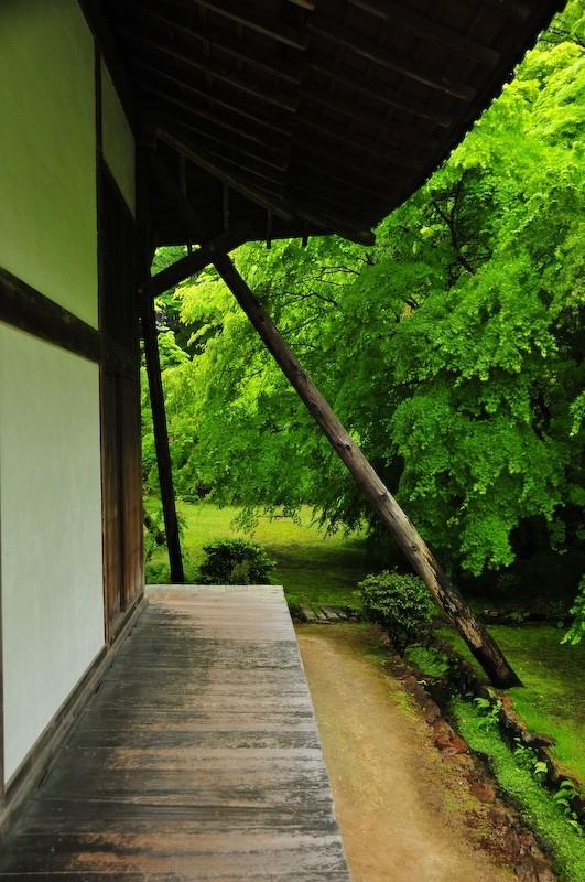 Spring Rain, Iwakura Jisso-in Temple, 2 (岩倉実相院)