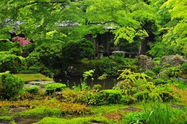 Spring Rain, Iwakura Jisso-in Temple, 5 (岩倉実相院)