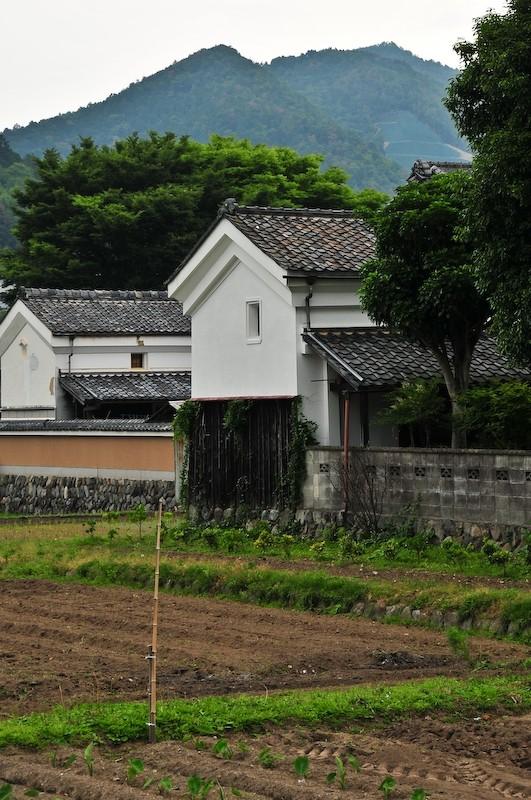 Farm, Ichihara (市原)