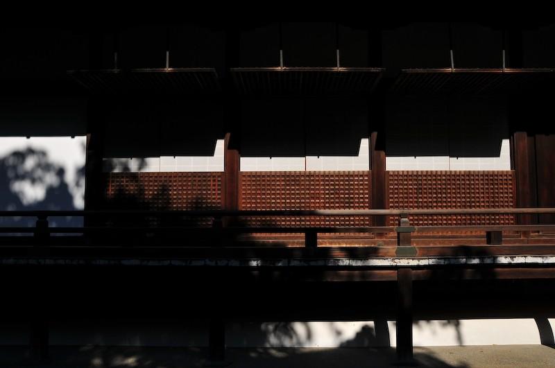 Deep Shadow, Mid-Afternoon