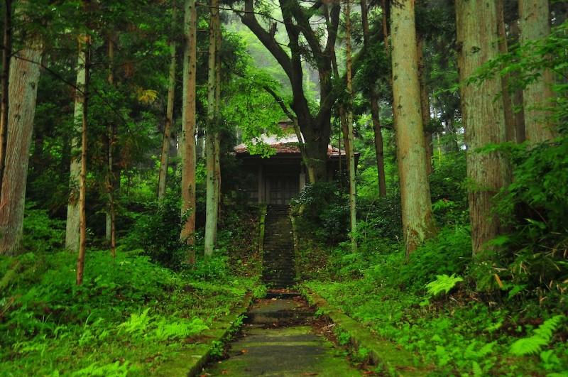 To the Temple, Hiraizumi (平泉町)