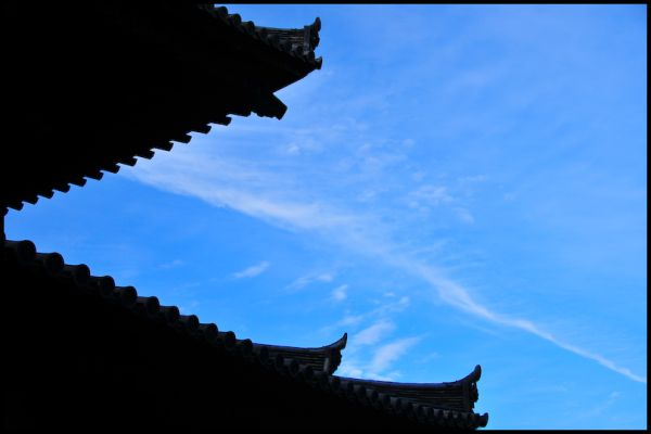 Buddha's Roof, Shokokuji Temple (相国寺)
