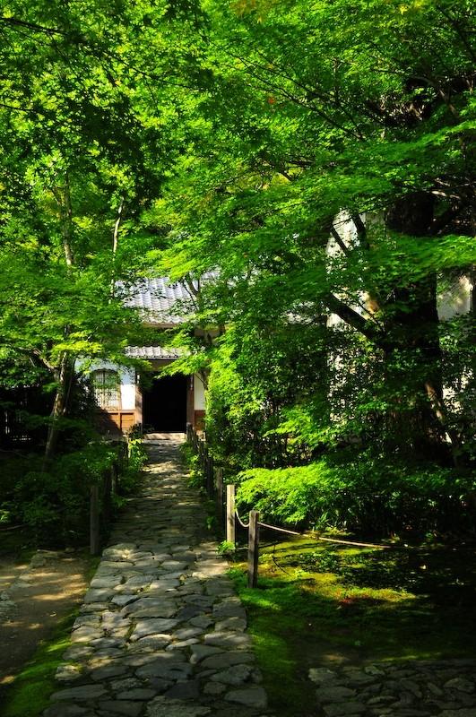 Entrance, Renge-ji Temple (蓮華寺)