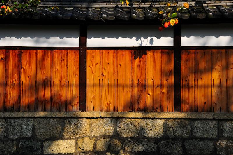 Hints of Autumn:  Persimmon (柿)